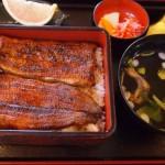 丑の日にうなぎをなぜ食べる?由来は江戸時代から始まった!